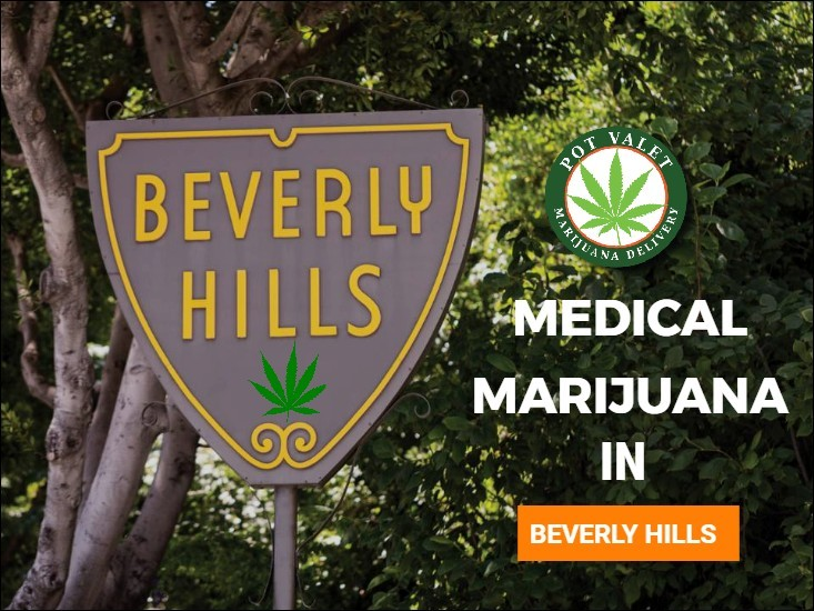 Everything You Need to Know About Medical Marijuana in Beverly Hills