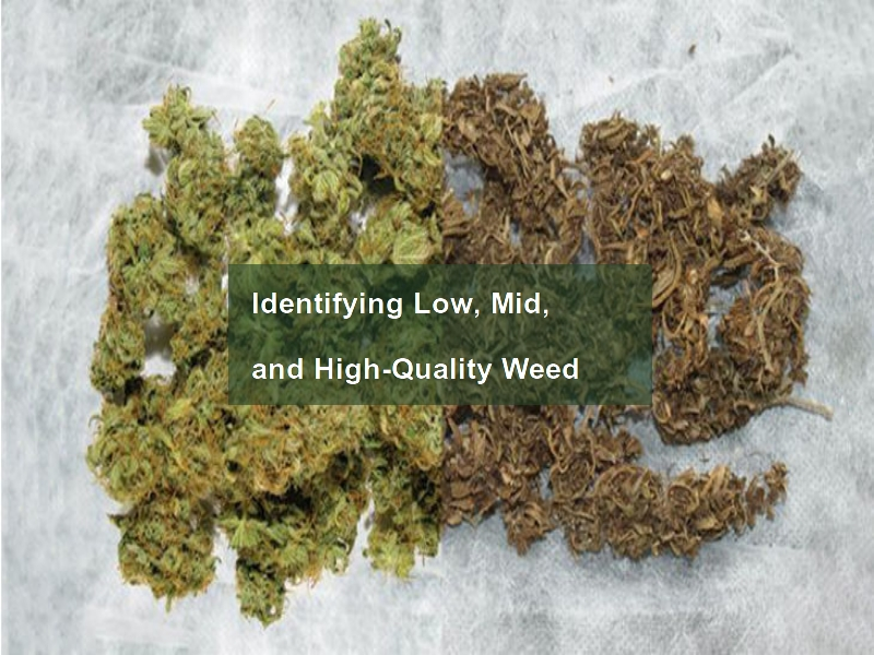 Low-, Mid-, and High-Quality Weed