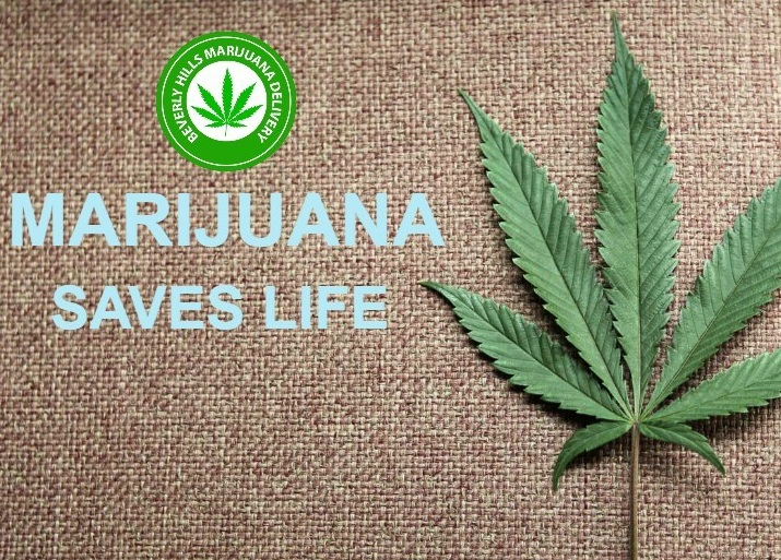 legalizing marijuana saving lives and money essay Read this essay on legalization of marijuana of marijuana and the lives it can change and possibly save be legalized because the money the state.